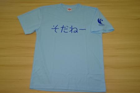 【A-142-05】カーリングそだねーグッズセット(ブルーTシャツS・マフラータオル)