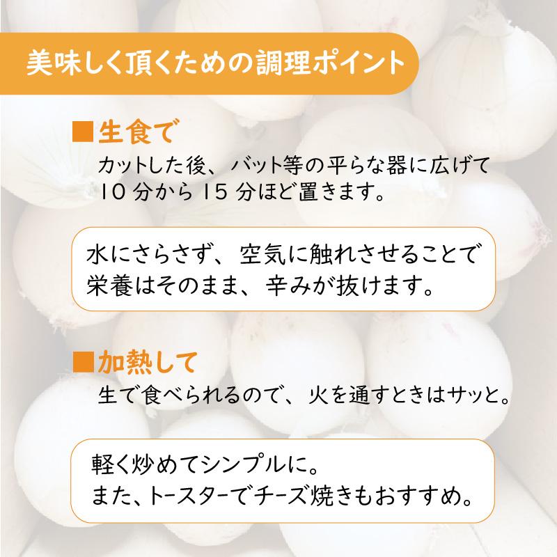 【Z65-004】ところの白玉ねぎ 2kg