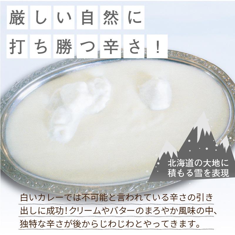 【Z9-008】クリシュナ 冬のオホーツク白い大地のカリー2食セット 手焼きナン付