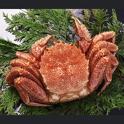 北海道2大ブランド米で食べる蟹丼!