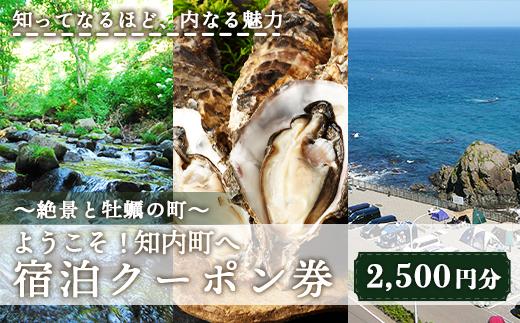AA002 〜絶景と牡蠣の町〜 ようこそ!知内町へ☆宿泊クーポン2,500円分【AA002】