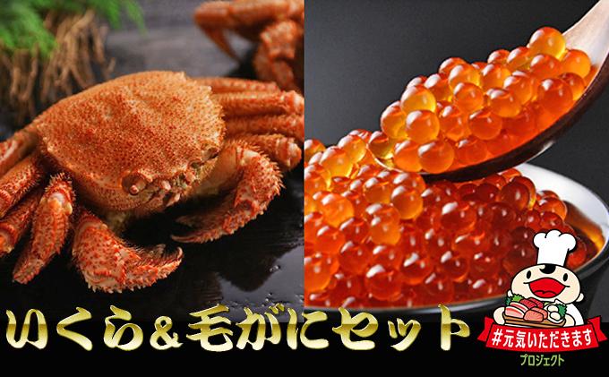 お店で手作り!北海道産いくら醤油漬250g&北海道産ボイル毛蟹350g