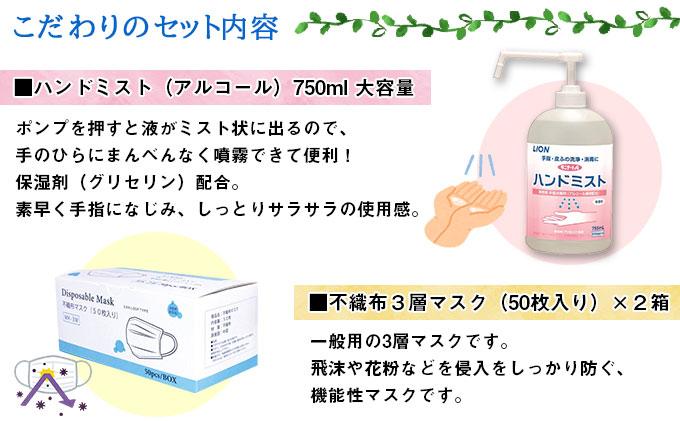 北海道産 ティッシュペーパー20箱 & 手指 アルコール ウィルス 除菌 エタノール スプレー & 三層 不織布 マスク 使い捨て 100枚 セット