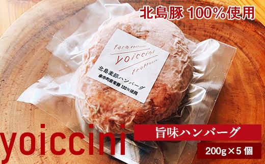 北島豚100%使用!ヨイッチーニ旨味ハンバーグ200g×5個〈ヨイッチーニ〉