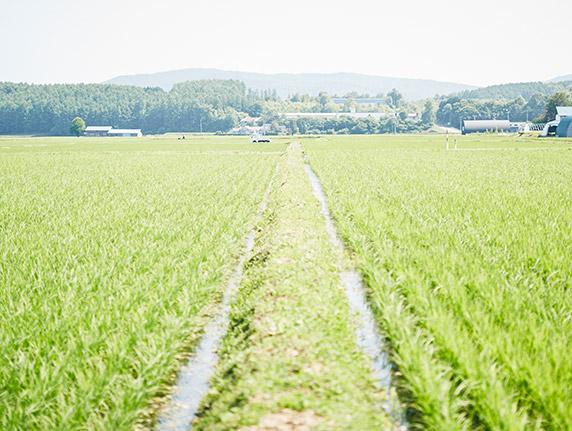 農業を守り育てる事業