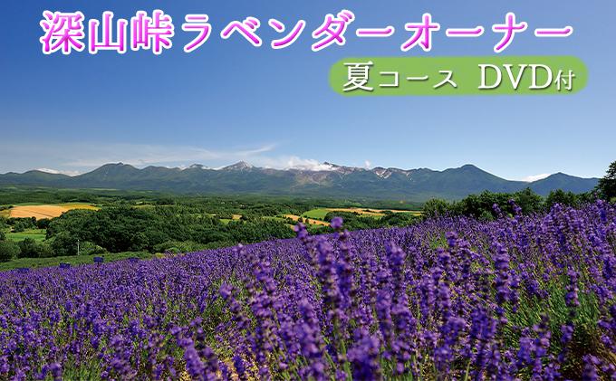 ラベンダーオーナー制度(夏コース)+「糸」DVD