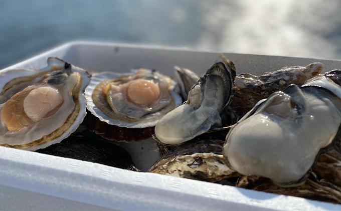神栄 北海道サロマ湖産 貝付きホタテ12枚・カキ約3kg