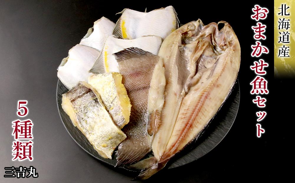 AS042【北海道産】海産物のプロが選ぶ!おまかせ魚セット
