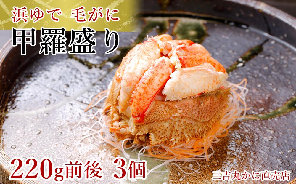 AS031【浜ゆで】北海道産毛ガニ甲羅盛り3個(220g前後3個)