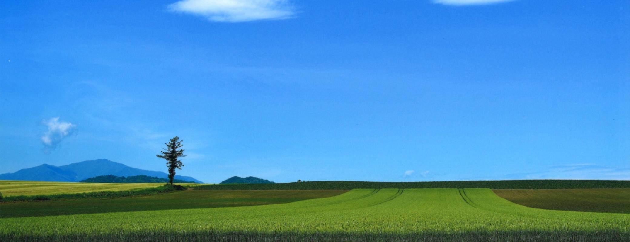 北海道 中札内村