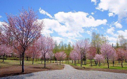 豊かな自然環境や美しい景観の維持保全のために