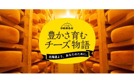 【新型コロナ被害支援】白糠酪恵舎チーズセット【3種類×2組】