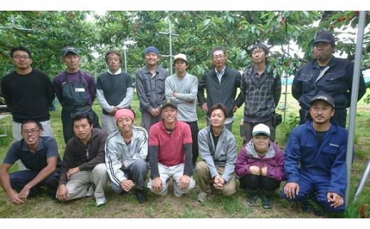 《先行予約》B3205 若手生産者厳選朝採りさくらんぼ!佐藤錦250gパック×4