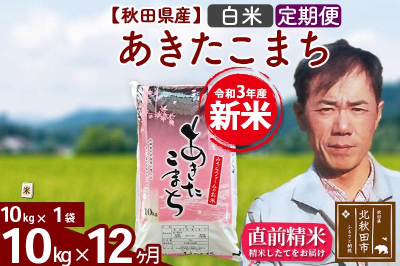 《定期便12ヶ月》 秋田県産あきたこまち10kg(10kg×1袋) 白米