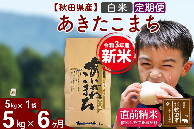 《定期便6ヶ月》 秋田県産あきたこまち5kg 白米 あいかわこまち