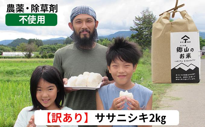 訳あり!2kg×1袋 農薬不使用のササニシキ(精米)