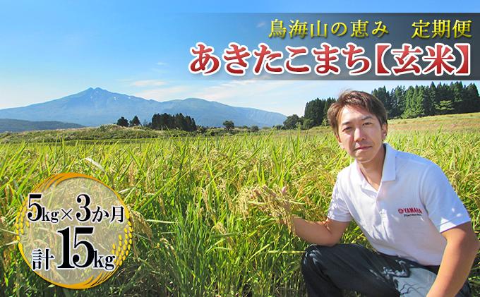 【定期便】5kg×3ヶ月 鳥海山の恵み 農家直送! あきたこまち(玄米)