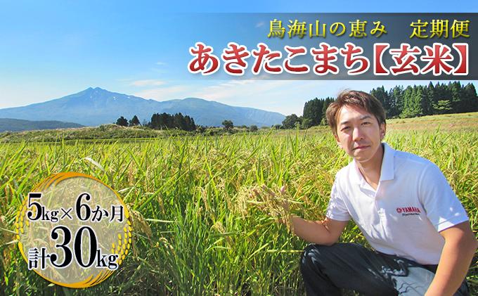 【定期便】5kg×6ヶ月 鳥海山の恵み 農家直送! あきたこまち(玄米)