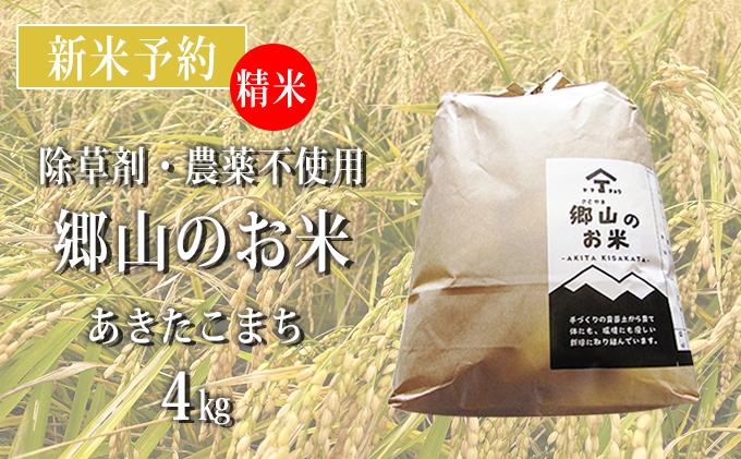 【新米予約】農薬不使用のあきたこまち(精米)「郷山のお米」4kg(2kg×2袋)