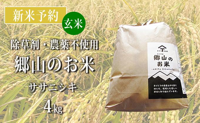 【新米予約】農薬不使用のササニシキ(玄米)「郷山のお米」4kg(2kg×2袋)