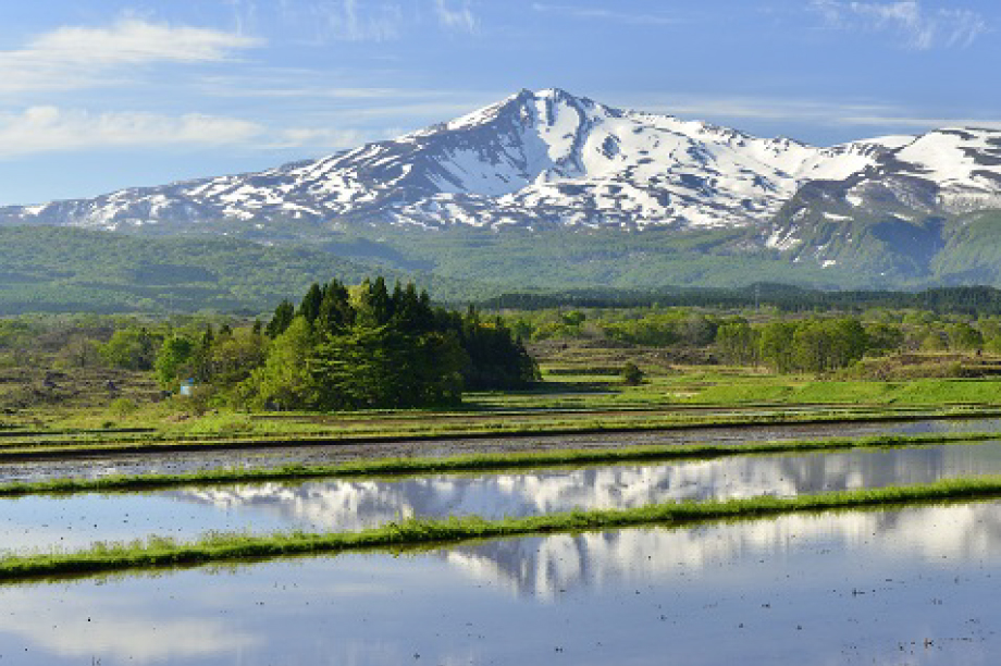 ふるさとの豊かな自然環境や美しい景観を保全したい