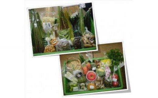 旬の野菜等セット(2回)