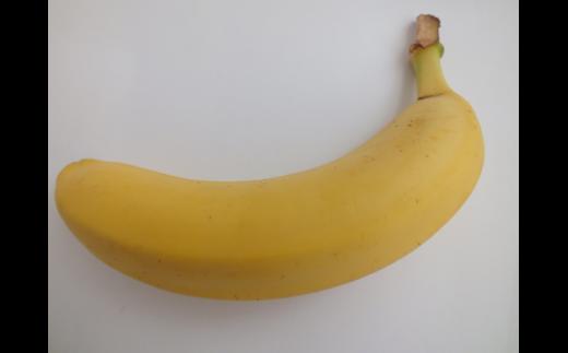 雪国バナナギフト3本セット