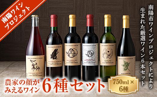 【数量限定】《南陽ワインプロジェクト》農家の顔がみえるワイン6種セット 1274