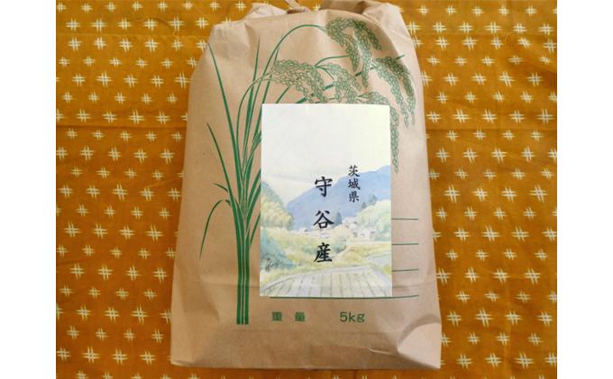 ☆生産農家直接仕入れ米 令和二年産 茨城コシヒカリ5kg【白米発送】
