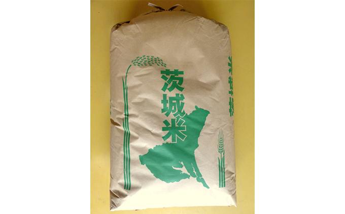☆生産農家直接仕入れ米 令和二年産 茨城コシヒカリ25kg【玄米発送】