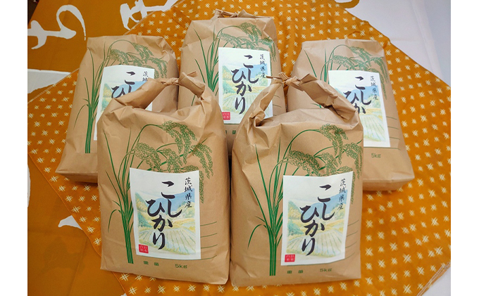 【5kg×5】☆生産農家直接仕入れ米 令和二年産 茨城コシヒカリ25kg【白米発送】