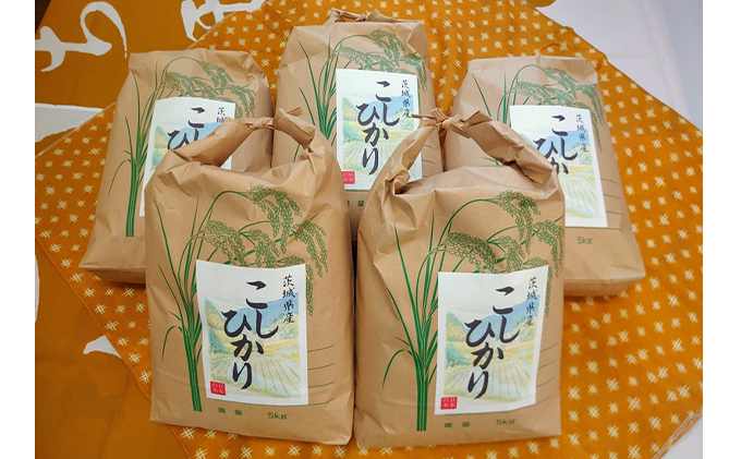 【5kg×5】☆生産農家直接仕入れ米 令和二年産 茨城コシヒカリ25kg【玄米発送】