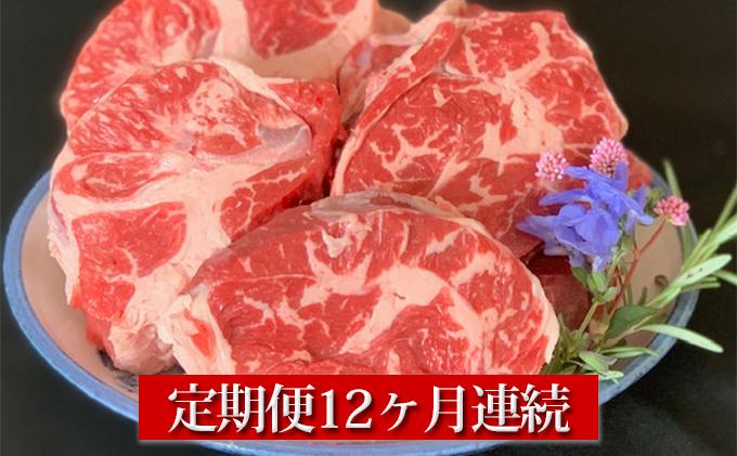 【定期便】【国産】牛スネ肉500g×2 12ヶ月連続お届け