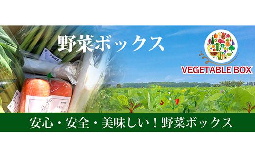20-07【6ヵ月連続お届け】阿見町産野菜ボックス(7~8品)