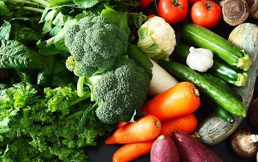 【ふるさと納税限定】道の駅さかい駅⻑おすすめ野菜セット