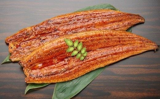 【訳あり】さかい河岸水産のふっくら国産うなぎ蒲焼2尾 ※サイズ不揃い