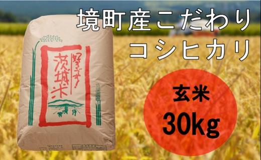 【数量限定】【令和3年産】境町のこだわり玄米「コシヒカリ」30kg
