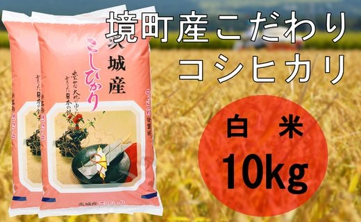 【令和3年産】境町産こだわり白米「コシヒカリ」10kg(5kg×2袋)