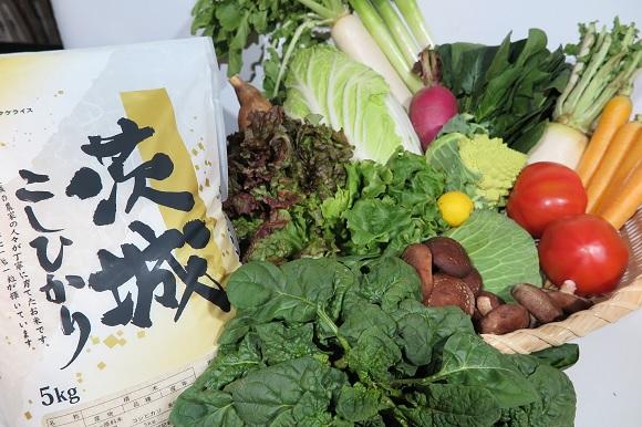 【ふるさと納税限定】茨城県産コシヒカリ5kgと季節の野菜セット