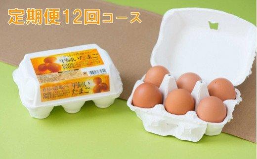 【12回定期便】12ヶ月連続!こだわりの平飼い卵 合計360個(30個×12回)
