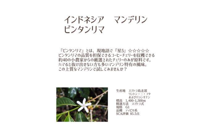 珈琲豆 深煎り 2種×200g 【粉】 インドネシア マンデリン ウガンダ ブギシュエルゴン