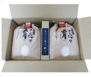 定期便・12回  富山県産こしひかり  育(はぐくみ)  白米3Kg×2袋