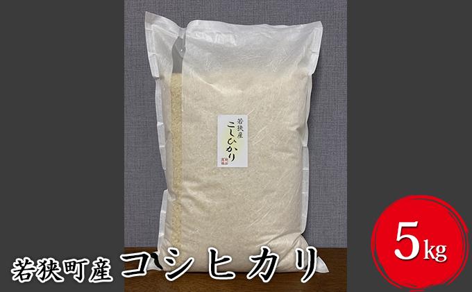 【ふるさと納税】令和3年産福井県若狭町コシヒカリ(一等米)5kg(神谷農園)5kg×1袋