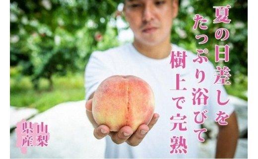 【2021年発送】 山梨県産 完熟桃 白鳳系 約1kg (2~5玉)