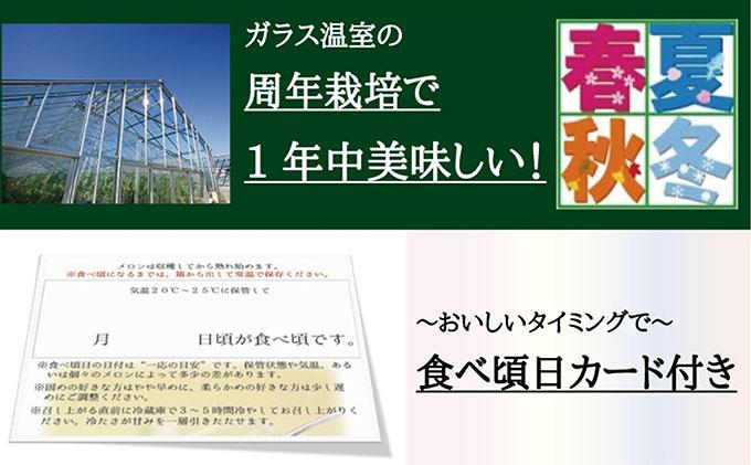 クラウンメロン山等級1玉 【6ヶ月定期便】