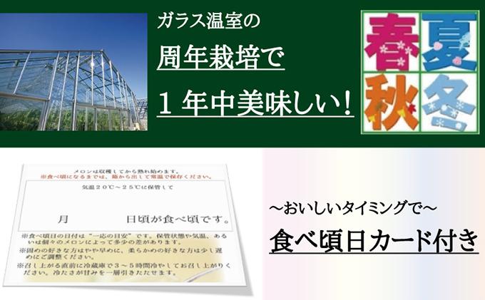 """【6ヶ月定期便】クラウンメロン""""名人メロン""""1玉 桐箱入り"""