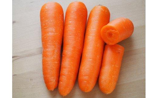 濃厚な味わい!伝統野菜!碧南鮮紅五寸にんじん 6.5kg【事前予約】 H105-022