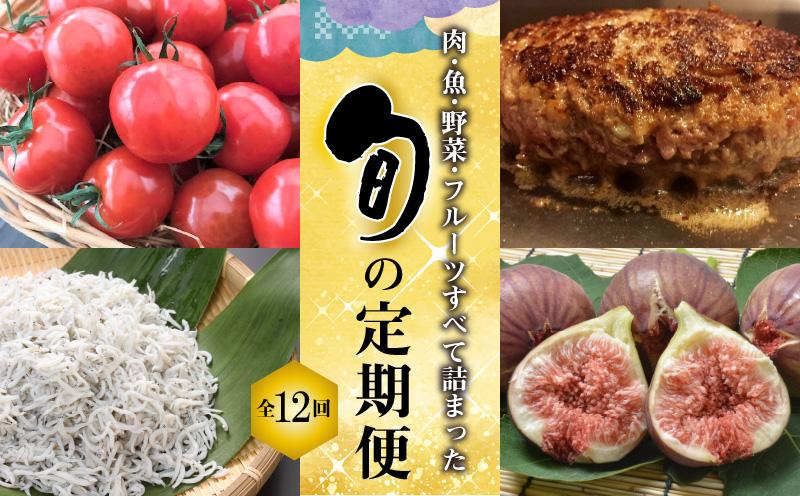 肉・魚・野菜・フルーツすべて詰まった旬の定期便(全12回お届け) H028-022