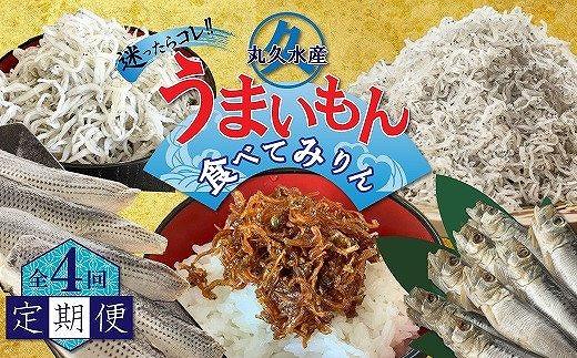 【定期便】迷ったらコレ!!🐡丸久水産のうまいもん食べてみりん🐡(毎月お届け全4回) H018-015