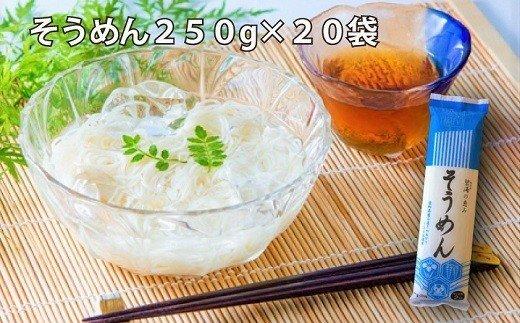 【愛知県産小麦きぬあかり使用】乾麺(碧海の恵み そうめん)セット5kg(250g×20袋) H008-023